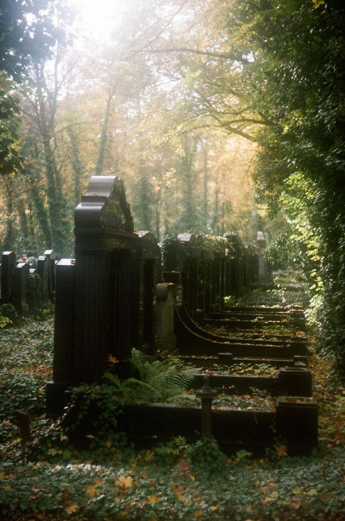 legendes-automne-ligne-tombes-000037210031-2-rd900.jpg